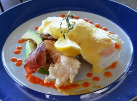island-benedict-breakfast-with-lobster-tail-and-curry-hollandaise
