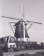 nederland-is-sinoniem-met-windmeulens-kaas-en-tulpe