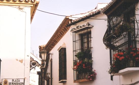 Malvas lyk amper mooier in die Mediterreense lande