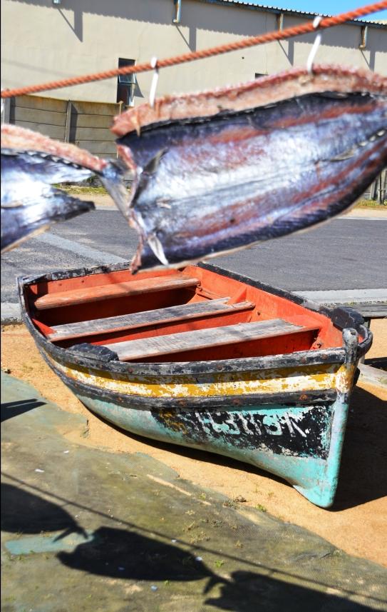 By Die Vis Vlekhuis hang die gevlekte vis sommer buite
