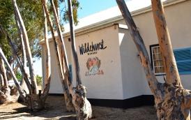 Wildehurst Winery se geboutjie en die stamme is gekleurkodeer