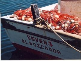 Tipiese Bozcaada boot