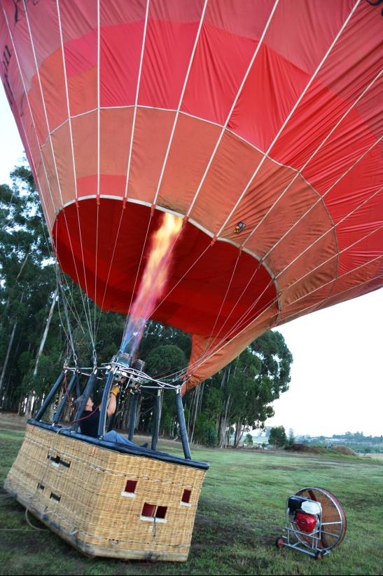 Woerts warts dryf die ballon omhoog