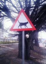 A road sign in Montagu