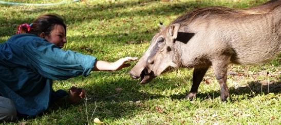 Ilse en die vlakvark ewe gelukkig