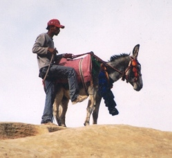 Half Westers, half nomade