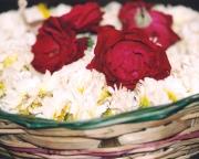 Blomme is by elke tempel en feesviering