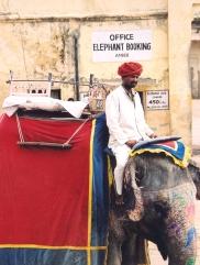 Op pad na Amber Fort - moenie op die olifante ry nie