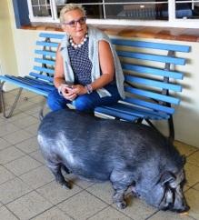Anna Blom, 'n wonderlike reismaat, ontmoet Graafwater Hotel se troetelvark