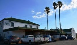'n Driemanskap palmbome in gelid by die Klapmuts Hotel