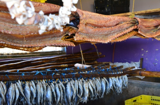 Vis hang soos wasgoed by Bo-Rivier Visserye