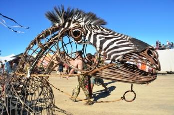 Chariot X deur Craig Els het inspirasie uit Afrika getap