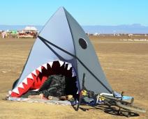 Die son bak in die Shark, maar die Beach Please-span knip 'n uiltjie as die moegheid oor hulle toesak