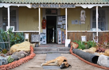 Let sleeping dogs lie in front of the Port Nolloth Museum