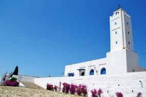 'n Blou en wit moskee aan die onderpunt van Sidi Boe Said se heuwel; van hier is dit net 'n paar minute se stap tot bo