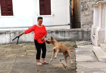'n Vrou speel met haar hond in die binnehof van 'n kerkie