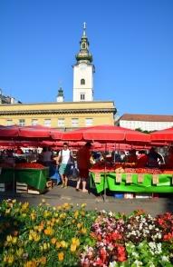 Stap ook na die keldermark as jy by Zagreb se varsproduktemark ronddrentel; jy weet nooit wat jy daar gaan aantref nie