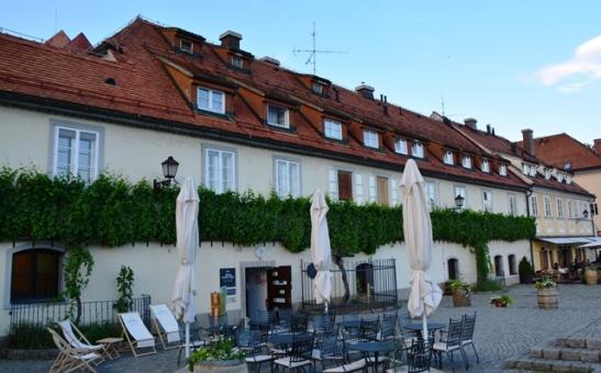 Die wereld se oudste wingerd in Maribor, Slowenie