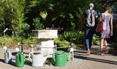 Moenie 'n besoek aan die Botaniese Tuin misloop terwyl jy in Stellenbosch oorbly nie