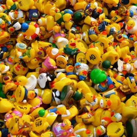 Nearly 2 000 duckies took part in the Skagway Ducky Derby in 2019