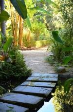 Voed jou siel in die Botaniese Tuin van Stellenbosch, 'n hanetree vanaf Evergreen Manor en Eendracht Hotel