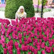 By Keukenhof poseer die besoekers orals vir foto's by tulpe in elke kleur denkbaar