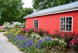 The Junction se tuine bied besoekers aan die Midlands Meander die geleentheid om onder bome en langs beddings blomme koffie te geniet