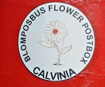 The only flower postbox in the land is in Calvinia